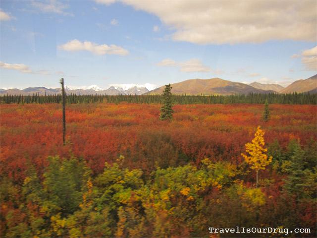 Alaska:  Denali Bound