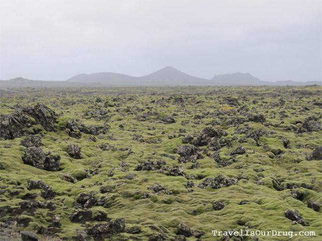 VolcanicMoss1
