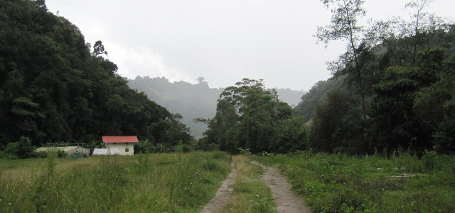 Panama:  Pipeline Trail and Torrential Downpour (Boquete)