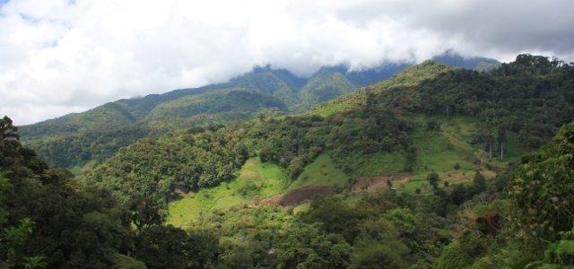 Panama:  Lost Waterfalls Trail (Boquete)