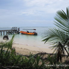 Panama:  Zapatilla Islands (Bocas)